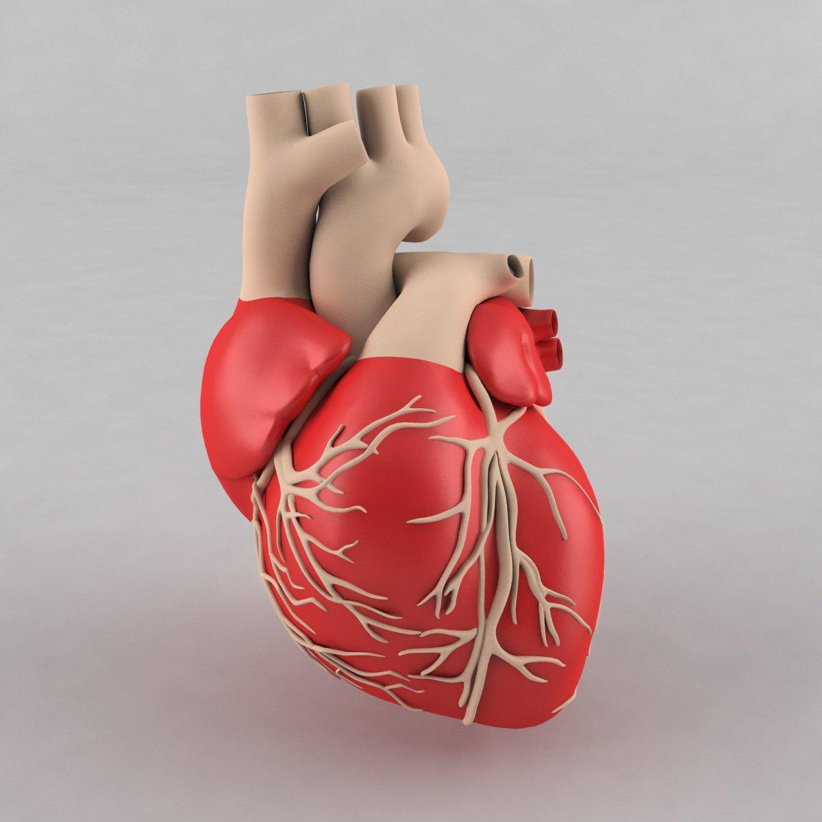 srce, kardiocentar